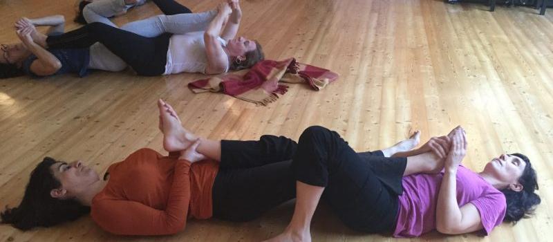 El Cuerpo Orgánico en las 7 próximas clases de Movimiento